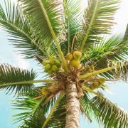 Playas en México para este Verano